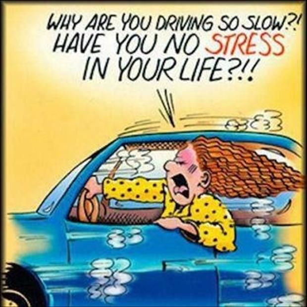 why-are-you-driving-so-slow-have-you-no-stress-in-your-life-funny-comics.jpg 620 × 620 pixlar