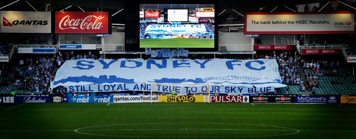 sydney fc still loyal and true to our sky blue
