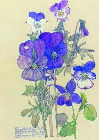 floral portrait by Charles Rennie MacIntosh. love the royal blue