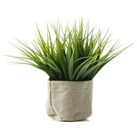 Artificial Reed Grass in Pot - Small Online, Buy for $65 in Australia - MyShopping.com.au