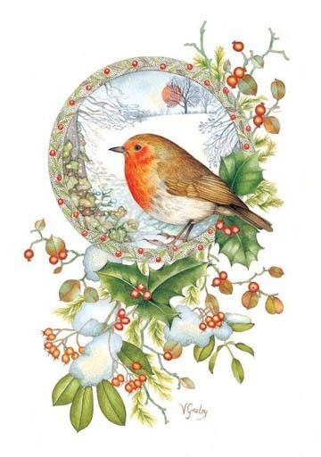 robin christmas cards - Google Search