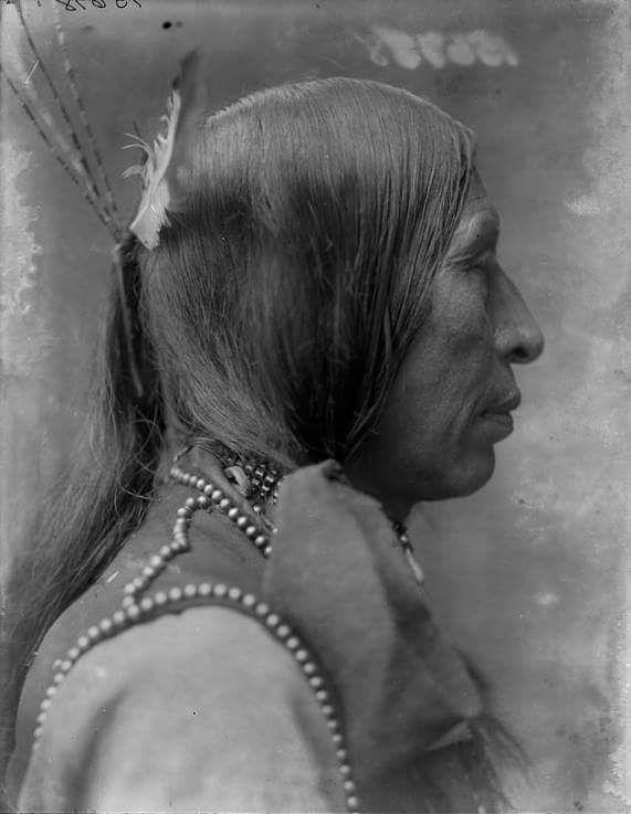 Чанте Сута (Тяжелое Сердце), оглала. 1904