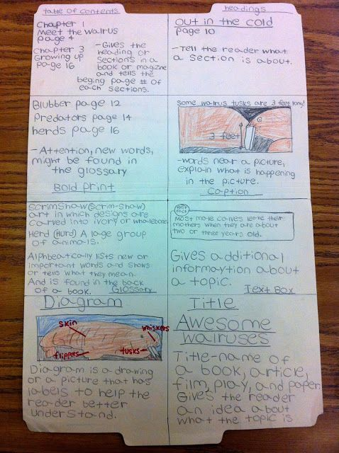 Non Fiction File Folder text features project
