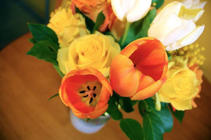 Orange Tulips, 2012