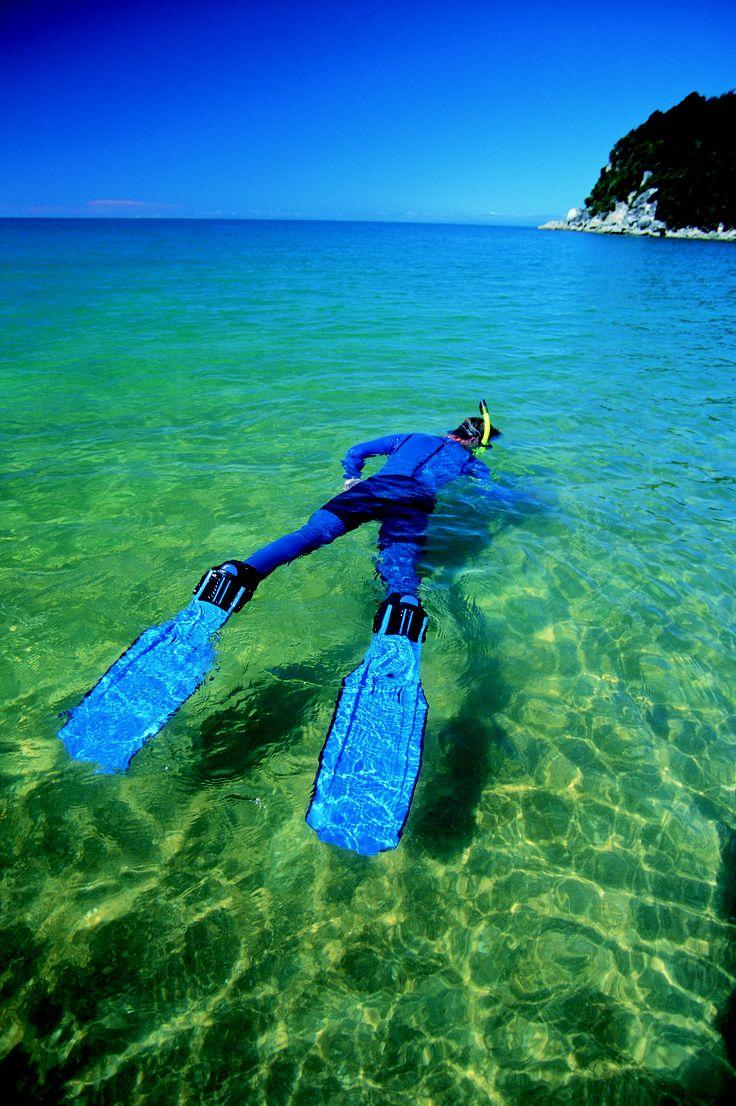 Snorkelling the crystal waters of Abel Tasman