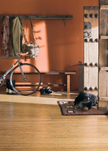 22 Best Teragren Bamboo Flooring Images On Pinterest