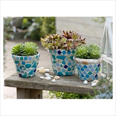 Suculentas em vasinhos de mosaico. The finished pots decorated with mosaic pieces photography