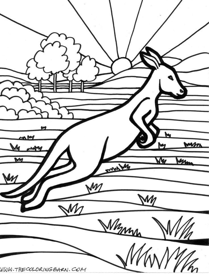 52 best social studies images on pinterest   kindergarten social ... - Kangaroo Coloring Pages Printable