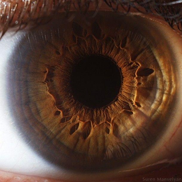 Olhos em HD por Suren Manvelyan