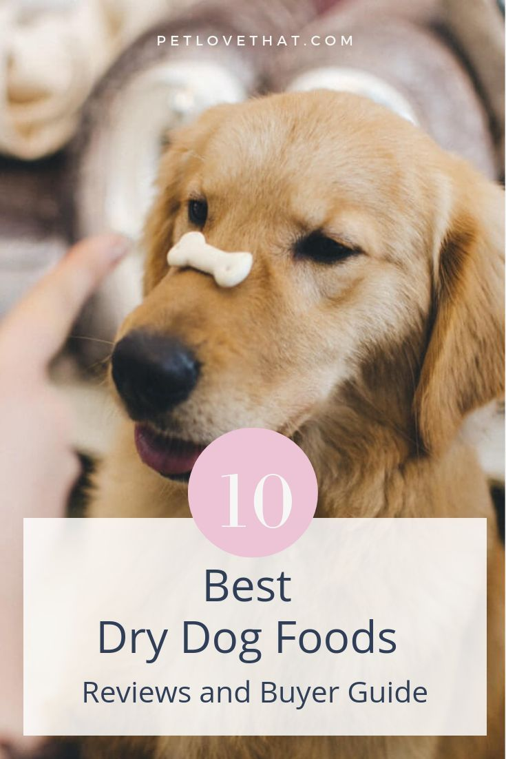 10 Best Dry Dog Foods Reviews And Buyer Guide 2019 With Images Best Dry Dog Food Dog Food Recipes Dry Dog Food