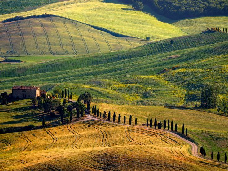 Fifty shades of Tuscany - OLYMPUS DIGITAL CAMERA
