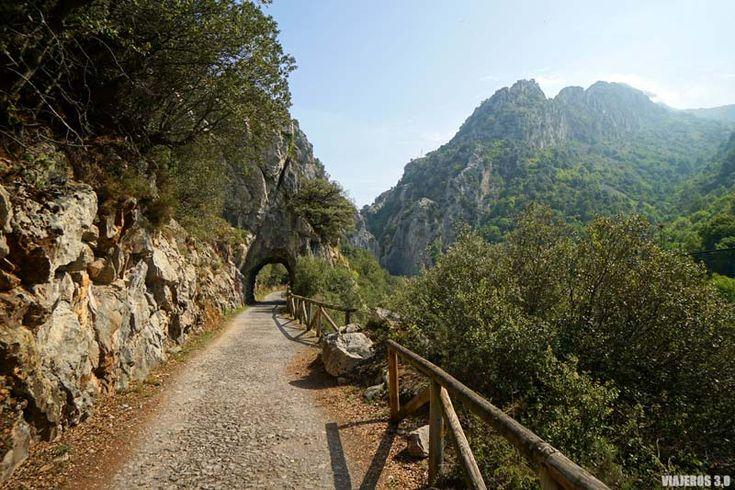 Cómo hacer la Senda del Oso en bici en Asturias (sin morir de agujetas) Santa Marina, Paraiso Natural, Country Roads, Photography, Lakes, Hiking Trails, Wanderlust, Natural Playgrounds, How To Make