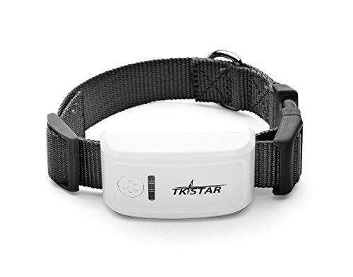 tkstar Mini GPS Tracker pour petit chien ou chat, avec collier et suivi en ligne: Multifonction traceur GPS avec de puissantes suivi de…