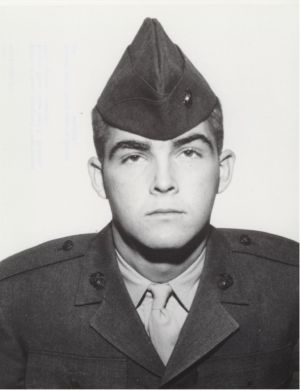 Marine Medals | PFC Gary Wayne Martini (1948-1967) USMC. Medal of Honor (posthumously) for conspicuous gallantry and intrepidity at the risk of his life above and beyond the call of duty, in action against enemy forces near  Binh Son, Republic of Vietnam, on 21 April 1967. Stouthearted and indomitable, Private First Class Martini unhesitatingly yielded his life to save two of his comrades and insure the safety of the remainder of his platoon. He gallantly gave his life for his country.