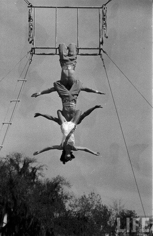 Circus, Florida State University, 1952. Photo by Loomis Dean.Circus Life, Vintage Everyday, Antiques Photos, Vintage Cirque, Cirque Unique, Circo Antiguos, Big Tops, Florida States Universe, Circus Girls
