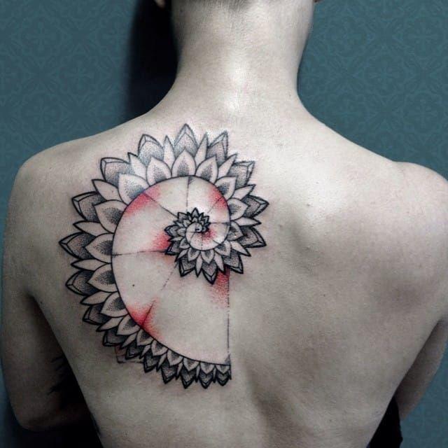15 Hypnotizing Fibonacci Spiral Tattoos   Tattoodo.com