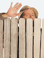 Earl Hindman  (Wilson)
