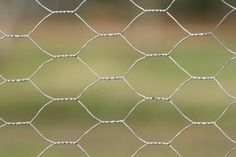 Basics on how to make chicken wire sculptures