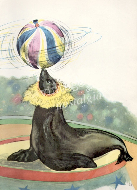 1960s CIRCUS SEAL vintage illustration by ...
