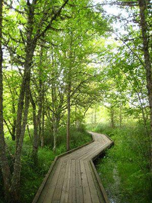 top 5 Trails of Corvallis Oregon
