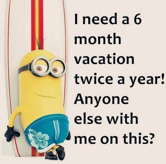 Funny Quotes About School: 139 Best Images About Funny Minion Quotes On Pinterest