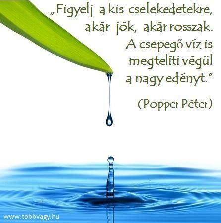 Popper Péter gondolata a türelemről. A kép forrása: Idézetek az élet szépségeiről és szomorúságairól # Facebook