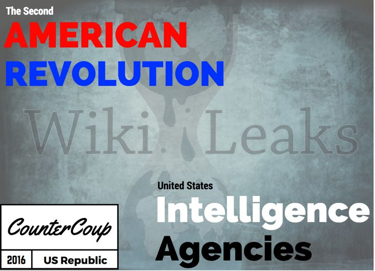 """2nd American Revolution"" in Play: Countercoup Sees US Intelligence Agencies & WIkileaks Defend US Republic  - Jefferey Jaxen"