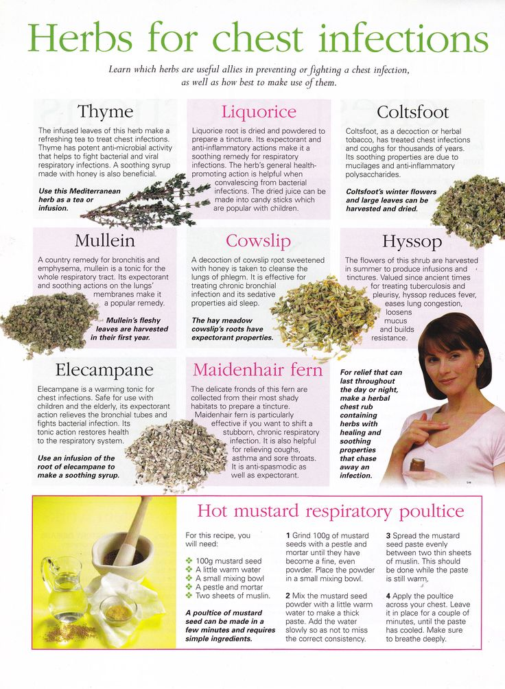 Herbs:  #Herbs for Chest Infections.