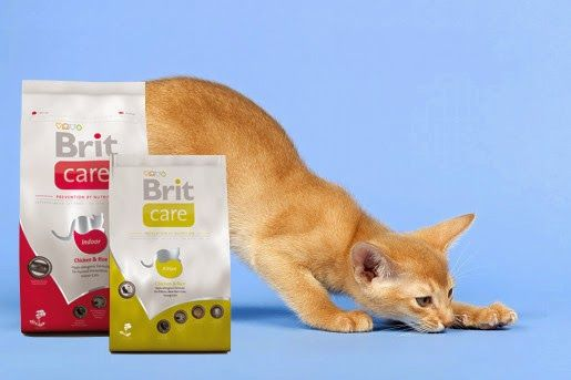 Karmy Brit Care dla kotów
