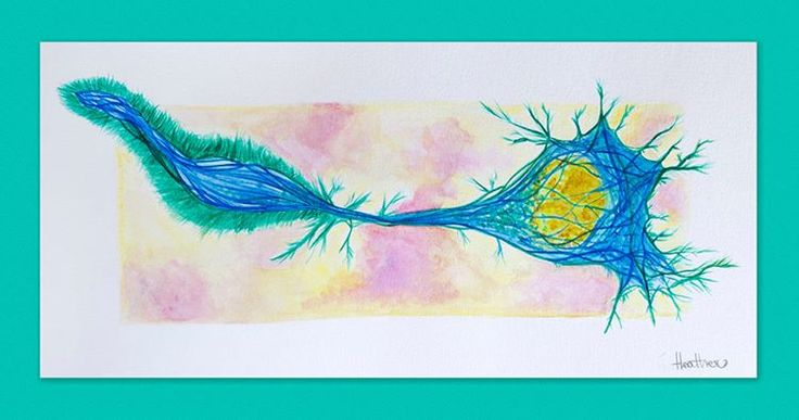 #Watercolor of #differentiating #neuronal #cell. You can see #actin, #microtubule cytoskeleton and cell #nucleus. Reference image by Torsten Wittmann.  #MirrorNeuronArt #scienceart #bioart #sciart #medicine #neuroscience #lablife #biology #science #neurobiology #neuron #neuroart