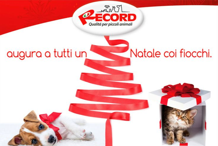 Auguri di Buon Natale e felice anno nuovo. Da Record