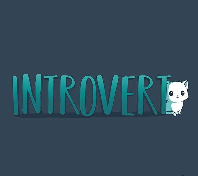 I'm a INTROVERT :3