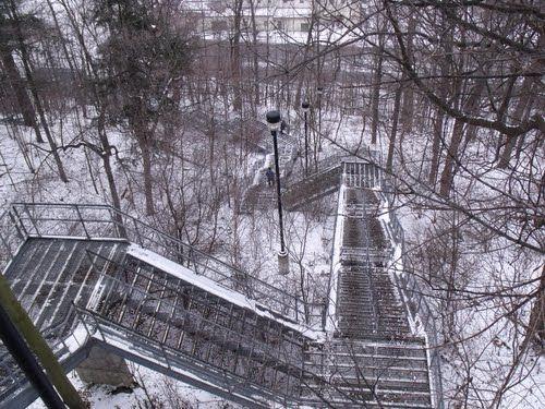 #Hamilton #Escarpment stairs - #Chedoke golf course