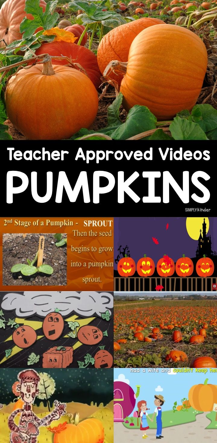 Teacher Approved Pumpkin Videos for Kids