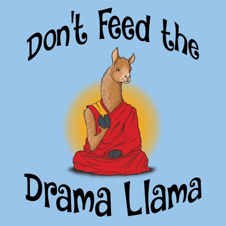 Dont Feed The Drama Llama Mejores 921 imáge...