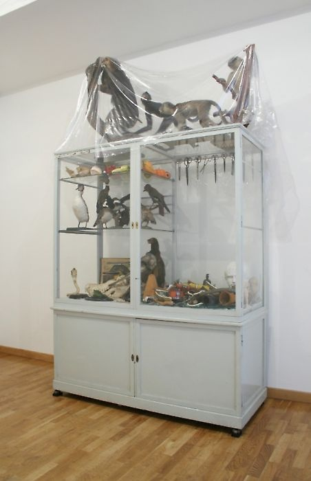 Mark Dion | The Museum in Ruins | Galerie Georg Kargl