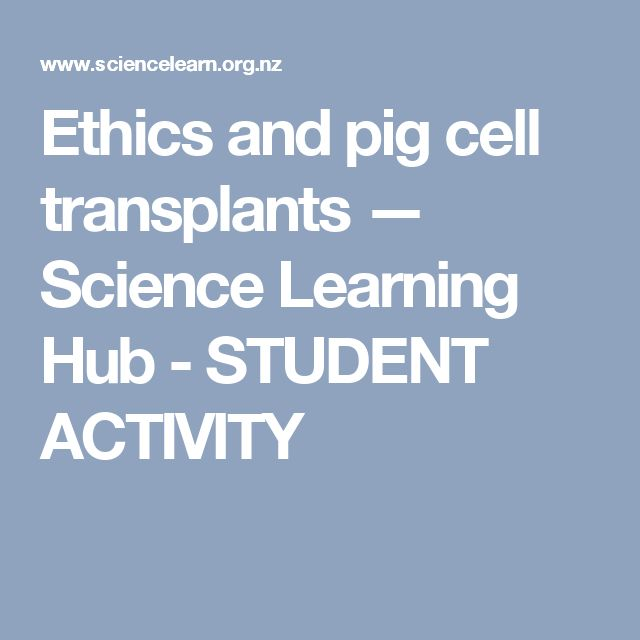 Ethics and pig cell transplants — Science Learning Hub - STUDENT ACTIVITY