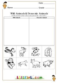 wild animals and domestic animals worksheets evs worksheets printable activity sheets animales. Black Bedroom Furniture Sets. Home Design Ideas