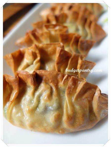 Airfried Crispy Dumplings