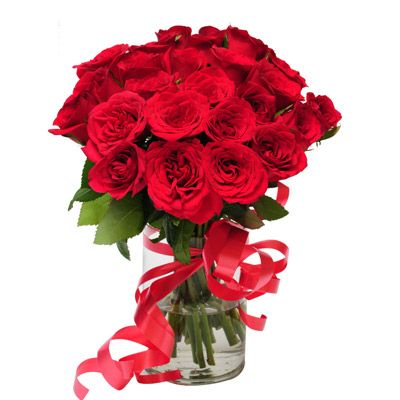 Same day flower delivery Chicago has fresh, bright and vibrant flowers for any occasion with an option of delivery at your doorstep.