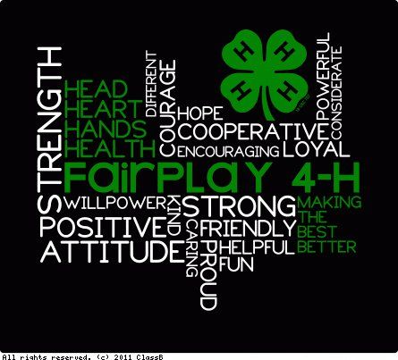 the meaning of 4h Mountainside stables 4-h members have participated in many events   emerson wrote this quote in the past in order to clarify the true meaning of  leadership.