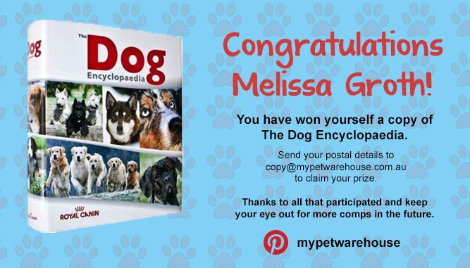 Congrats to Melissa Groth who has won out Pin It! To Win it! Boxing Day contest. Please contact us at copy@mypetwarehouse.com.au and we will mail out your prize.
