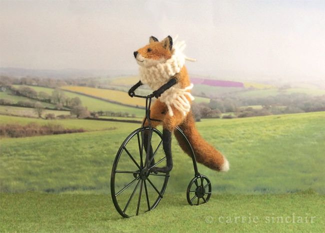 Some see cycling as a pleasurable hobby, others a serious sport. As a native Frenchman, of course this dapper fox is familiar with 'le tour', however his interest in the sport piqued last year when several hundred lycra-clad competitors passed through his town in the picturesque Loire Valley. Now in training for the next race he can be seen most mornings on the back-roads, practicing his gear changes and speedy descents.