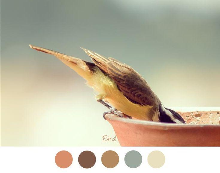 Bekijk de foto van MrsHooked - Kleurinspiratie met als titel BIRD - Vogeltje op de rand van een bloempot. Zachte tinten geel / groen / bruin en koper voor in het interieur en andere inspirerende plaatjes op Welke.nl.