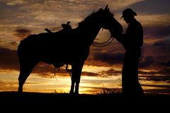 Horse And Sunset - Download From Over 62 Million High Quality Stock Photos, Images, Vectors. Sign up for FREE today. Image: 35656682