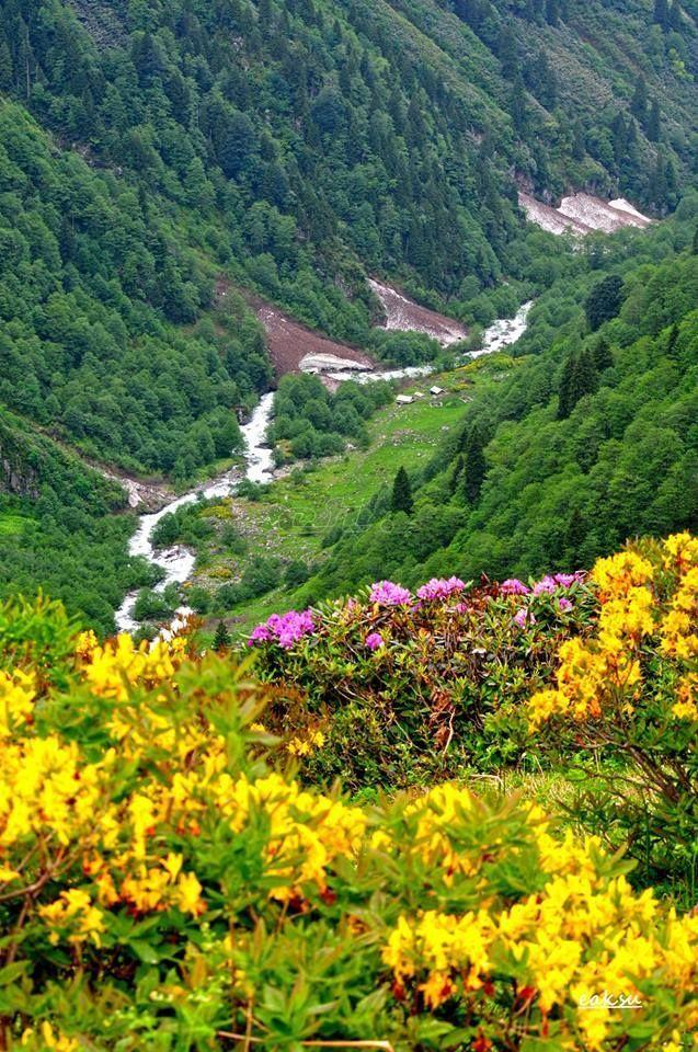 Artvin - Eastern Blacksea Region of Turkey #doğukaradeniz #artvin #travel  #nature