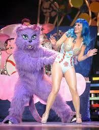 Резултат с изображение за katy perry with kitty purry