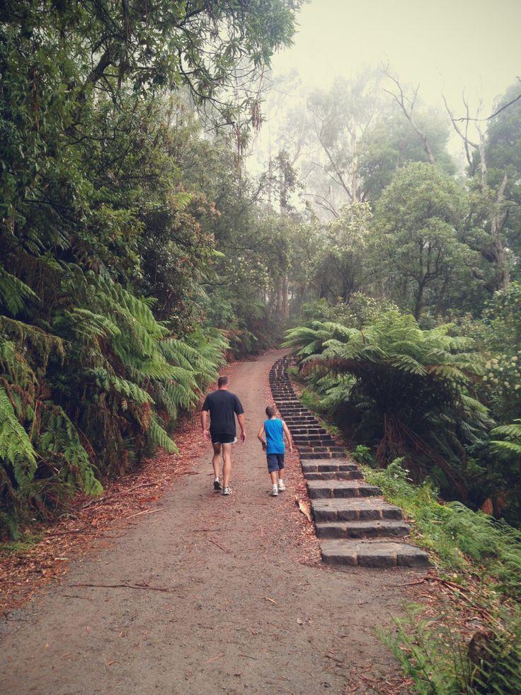 1000 Steps / Kokoda Track Memorial Walk : Dandenong Ranges, Victoria, Australia
