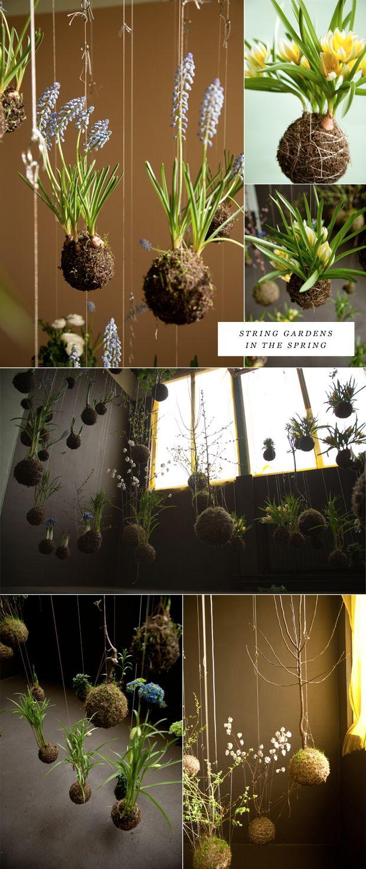 string garden2