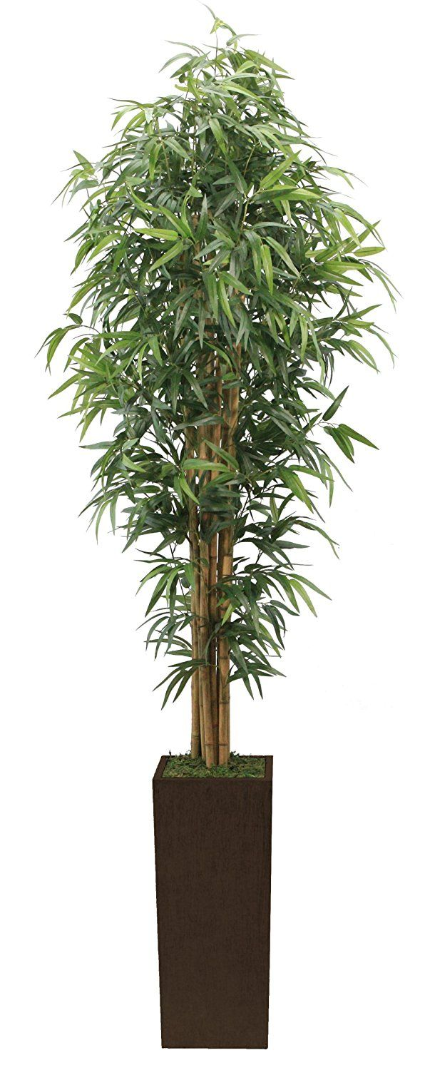 Laura Ashley 7 Foot Tall High End Realistic Silk Bamboo Tree with Brown and  Bronze Wood